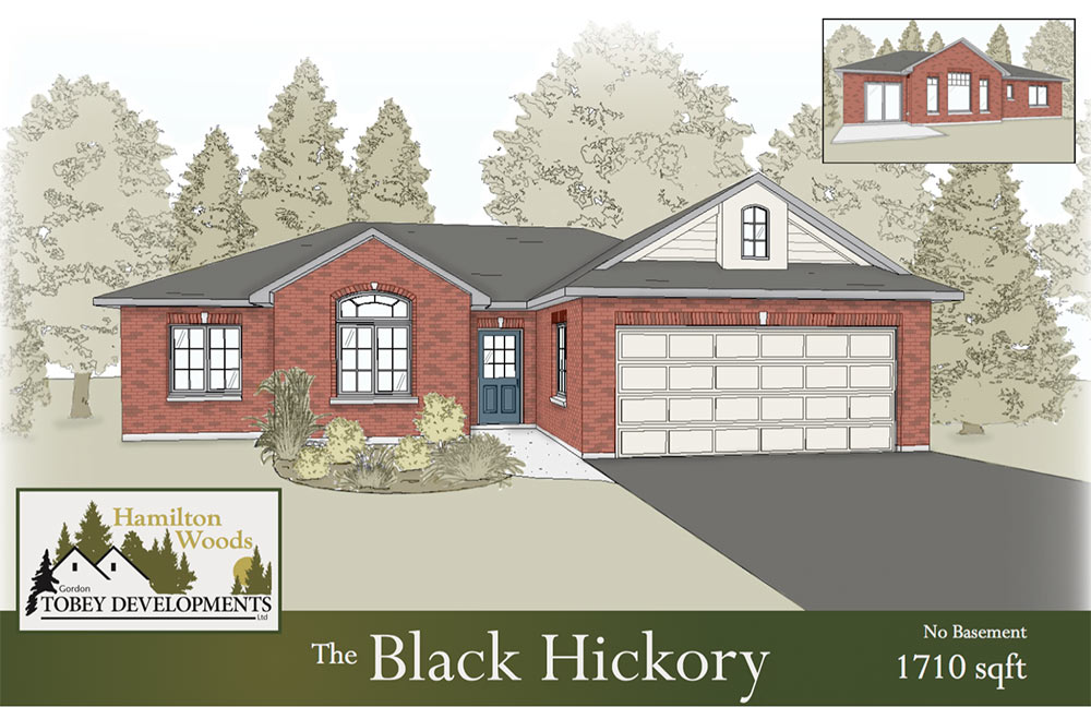 The Black Hickory